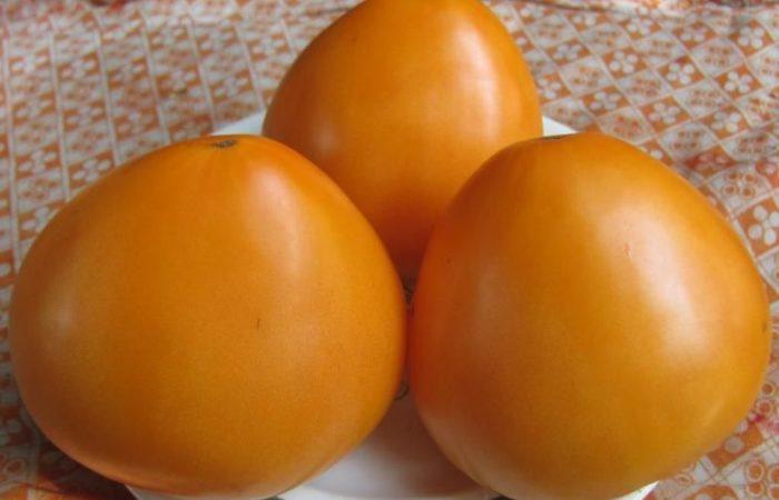 Три томата Золотое сердце на тарелке