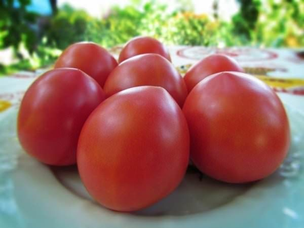 Несколько помидоров на тарелке