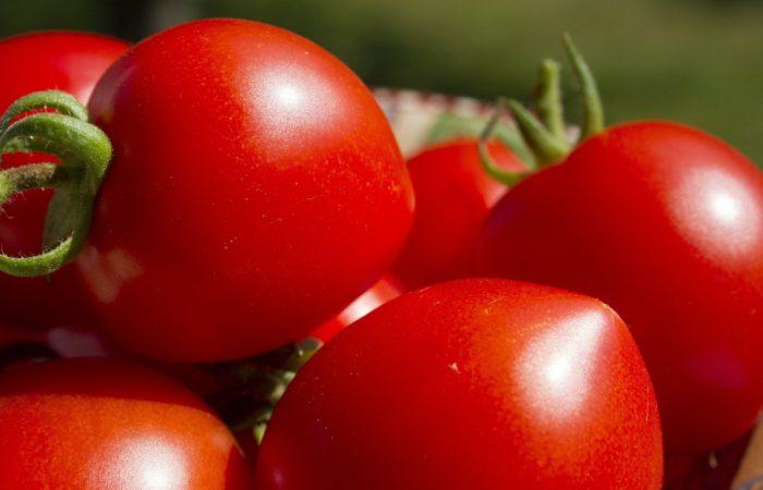 Несколько красных помидоров
