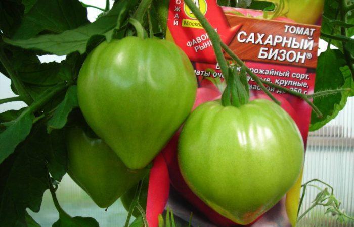 Семена и зеленые помидоры Сахарный бизон