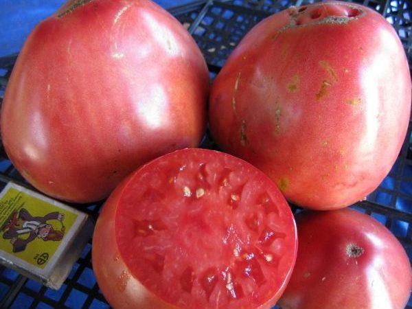 Несколько крупных томатов
