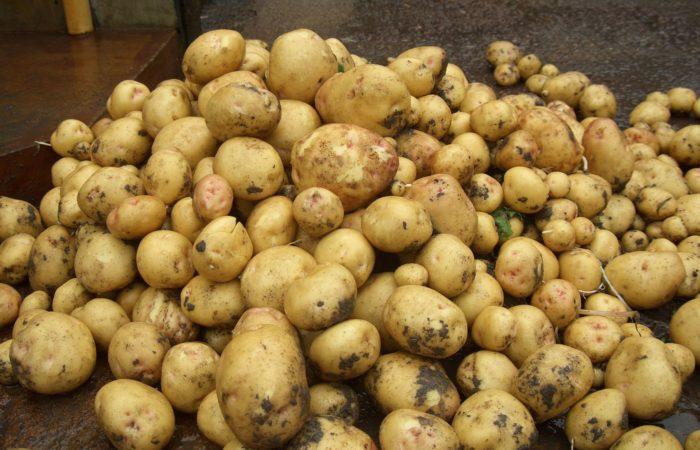Насыпанная на полу картофшка
