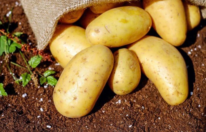 Несколько картофелин выпали из мешка