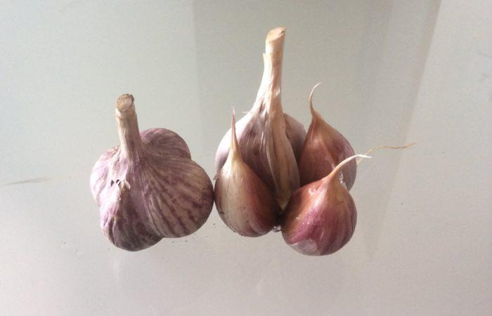 Две головки чеснока