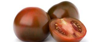Два помидора Кумато