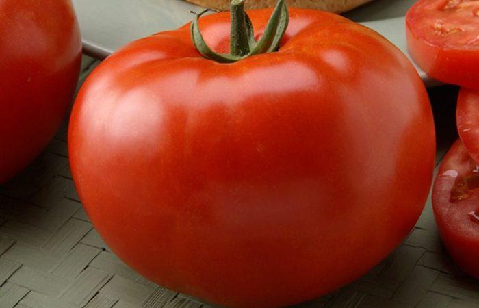 Один помидор