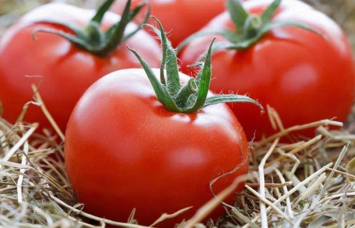 Три помидора на соломе