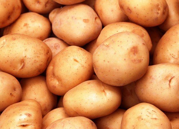 Предпосевная обработка почвы под посадку картофеля. Подготовка земли под картофель
