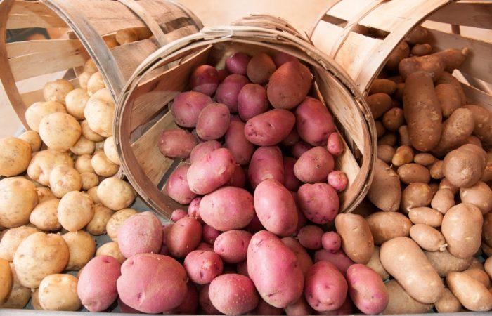 Три сорта картофеля