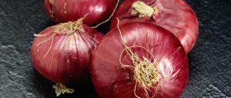 Четыре фиолетовые луковицы