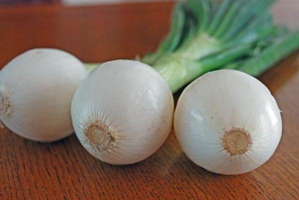 Три белые луковицы