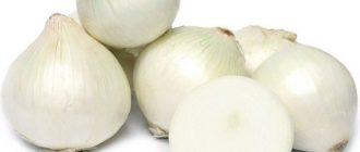 Несколько белых луковиц